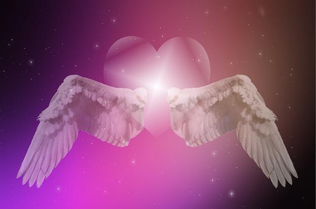 羽 天使ハート