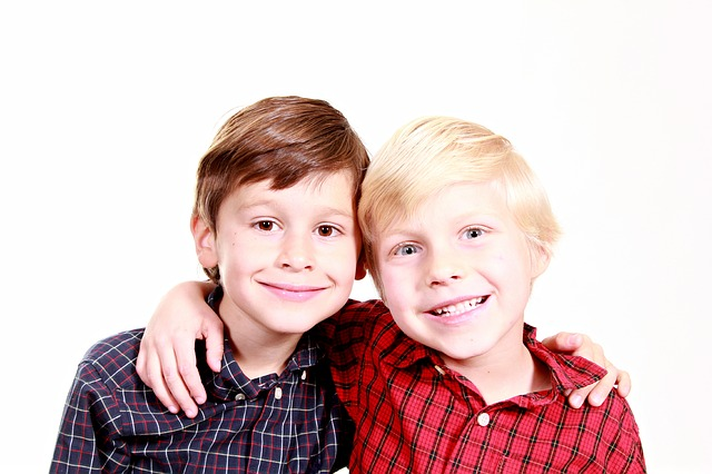 brothers-1022994_640